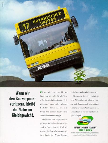 bus-aber-pflanze